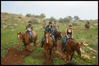 טיול רכיבת סוסים